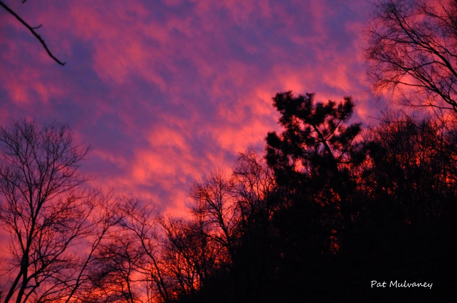 """Evening Sky"" by Pat Mulvaney"